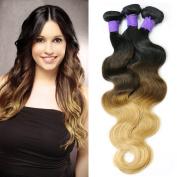 Maoyuan Brazilian Hair Bundles,QueenStar Brazilian Virgin Body Wave Ombre 1b/4/27# Human Hair Virgin Body Wave Hair Weave Grade 7A