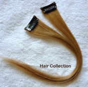 Hair Collection-30cm Strawberry Blonde Human Hair Clip in on Extensions - 4.1cm widex 2pcs