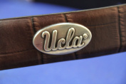 (5 pieces) UCLA Silver / Pewter Conchos Logo with screws