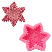 Mr.S Shop 3D Snowflake Hexagon Shape Silicone mould Biscuit Fondant Jelly Pudding Chocolate Mould DIY Cake Decoration Tools