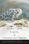 Snowy Owls, Egrets, and Unexpected Graces