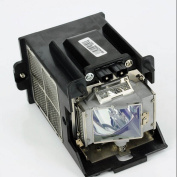 GOLDENRIVER R9832752 Projector Replacement Lamp with Housing for BARCO RLM W8