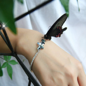 "T400 Jewellers ""Dream Chasers"" Elements Crystal Butterfly Bangle Bracelet, Valentine's Day Gift"