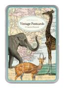Cavallini Carte Postale Animals