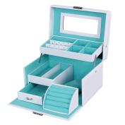 Songmics Lockable Jewellery Storage Box Organiser with Mirror JBC114W