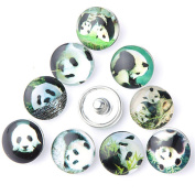 ZARABE 10PC Mix Snap Button 18MM Giant Panda Glass Rhinestone Jewellery Charms Random