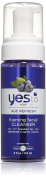 Yes to Blueberries Foaming Facial Cleanser, 150ml