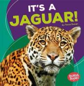 It's a Jaguar!