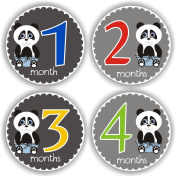 Philly Art & Crafts Baby Stickers - Baby Month Stickers - Baby Monthly Stickers - Baby Shower Gift