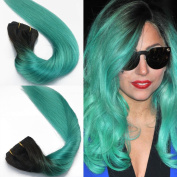 41cm 46cm 50cm Ombre Hair Clip In Extensions Two Tone Colour Black to Green Silky Straight