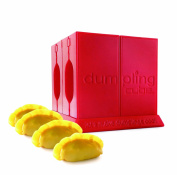 Dumpling Cube - Original as invented by Rice Cube