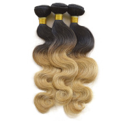 Babe Hair 7A Blonde Ombre Malaysian Body Wave Remy Human Hair Extensions Full Head Set 1B/27 Colour, 10-70cm , 100 Grammes a Bundle