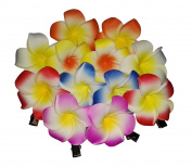 12 Pcs Assored Colour 5CM Hawaiian Plumeria Foam Flower Hair Clips Bridal Barrette Hair Acceessories Hairclip Hairpin Hair Pin for Wedding Party Beach