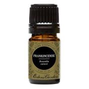Frankincense (Boswellia carterii) 100% Pure Therapeutic Grade Essential Oil by Edens Garden- 5 ml
