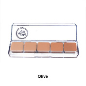 "RCMA 5 Part ""Series Favourites"" Palette, OLIVE Series"