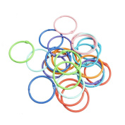 Bilipala Loose Leaf Binder Rings Book Ring Keychain, 3.8cm , 24 Count, Assorted Colour