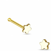 Nose Stud with Steel Star - Gold