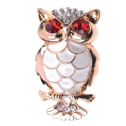 Zrong Women Ladies Vintage Style Owl Shaped Brooch Pin Rhinestone Covered Scarves Shawl Clip