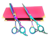 Star Scissors New Professional Hairdressing Hair Cutting Scissors In Beauty Shears Thinning Set 15cm L Convex Edged Japanese Steel in Health & Personal Care