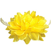 2Pcs Bridal Wedding Orchid Flower with Feathers Hair Clip Barrette Women Girls Accessories