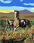 Plaid Creates 22056 Running Pintos Paint by Number Kit, 28cm x 36cm