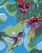 Plaid Creates Paint by Number Kit (20cm by 25cm ), 22052 Hummingbird