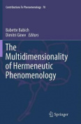 The Multidimensionality of Hermeneutic Phenomenology