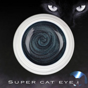 Super Cat Eye colour Uv Gel - 5 ml Magnetic Claw Reconstruction and nail art Stamp Magnetic Magnet effect petrolio