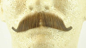 European Moustache LIGHT BROWN - 100% Human Hair - no. 2012 - REALISTIC! Perfect for Theatre - Reusable!