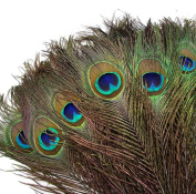 Qingsun 100pcs Natural High Quality Peacock Tail Feathers with Eye Peacock Feathers 25cm - 30cm