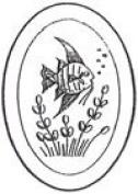 10cm x 15cm Oval Engraved Fish Premium 1.3cm Bevelled Glass - Pkg of 4