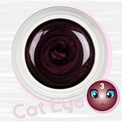 Cat Eye colour Uv Gel Magnetic 5 ml-reconstruction Claw nail art effect and Stamp Magnetic Magnet porpora