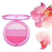 AutumnFall Beauty Face 3 Colour Blush Makeup Baked Cheek Blusher Palette Colorete Sleek Cosmetic Face Shadow Press Powder