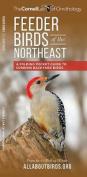 Feeder Birds of the Northeast