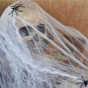 Wishfive Noctilucent Spider Web With 2 Spiders Halloween Home Party Haunted House D¨¦cor