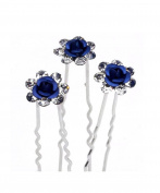 Jelinda 10 Pieces of Bridal / Wedding / Prom / Silver Crystal Diamanté, Rose, Flower Hair Pins, Clip Handle
