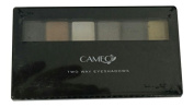 Cameo Two Way Eyeshadow #10
