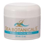 Sea Botanicals Seaweed Facial Mask