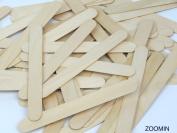 2 X Natural Jumbo Wood Craft Sticks - 100 pcs