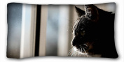 Custom Animal DIY Pillow Cover Size 50cm x 90cm suitable for Full-bed