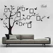 X Large Home Art Decals Family Tree Birds Photo Frame Quotes Wall Stickers Decor