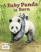 A Baby Panda is Born (Engage Literacy