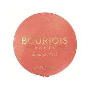 Bourjois Little Round Pot Blush, Healthy Mix 2.5g