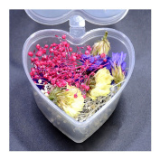 1 Box Mixed Dried Flowers Nail Art DIY Preserved Flower With Heart-Shaped Box Glass Bottle Decor #K