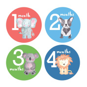 Design Corral Baby Boy Monthly Stickers Animals - Monthly Baby Stickers Boy - Onsie Stickers Boy
