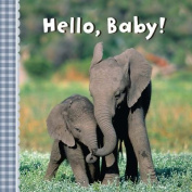 Hello, Baby! [Board Book]