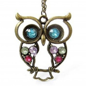 Minifamily® Vintage Blue Eyes Owl Charm Long Necklace Come With Free Unique Ring and Rubber Wrist Band