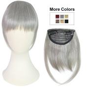 REECHO Fashion One Piece Clip in Hair Bangs / Fringe / Hair Extensions Colour