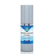 Breakthrough Snow Algae Collagen Peptide Serum, Best Face Moisturiser for Anti-Ageing Anti Wrinkle Treatment, Clinical Strength Facial Benefits - Large 30 ML Airless Pump Bottle