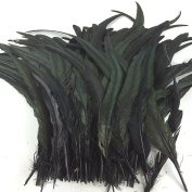 Sowder Black Rooster Coque Tail Feathers 28cm - 36cm Lengh Pack of 50